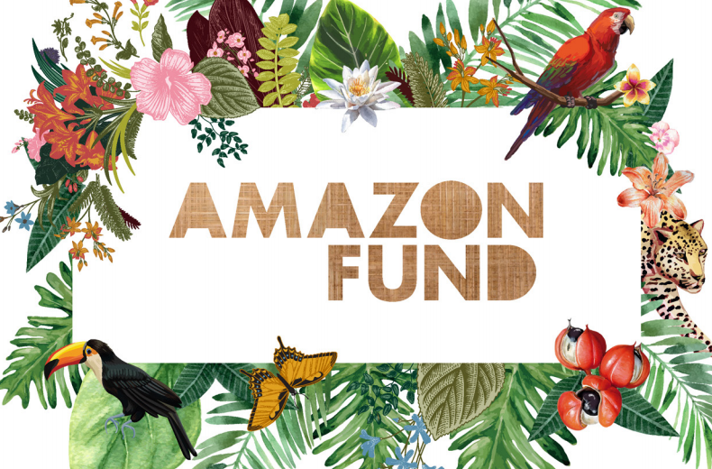 Cronfa Amazon
